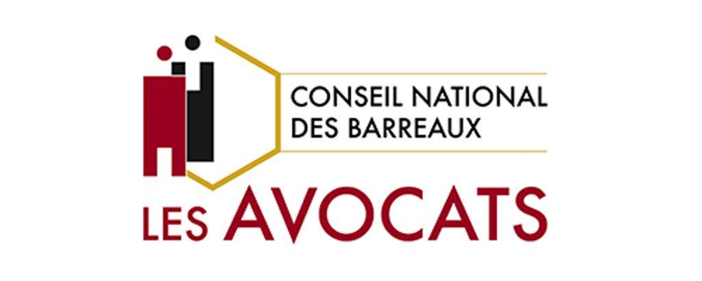 Maître Pierrick Maintigneux, cabinet d'avocat à Fontaines-sur-Saône, au conseil national des barreaux.